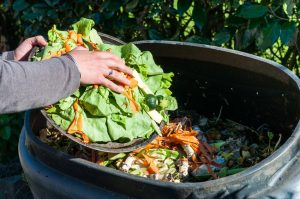 Composting the Kitchen Waste